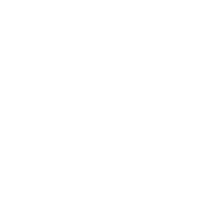 NSAR logo